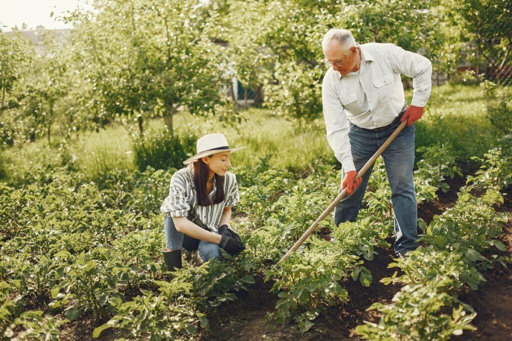 Home Gardening, the Greener Way